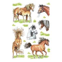 Etiket Herma getekende paarden