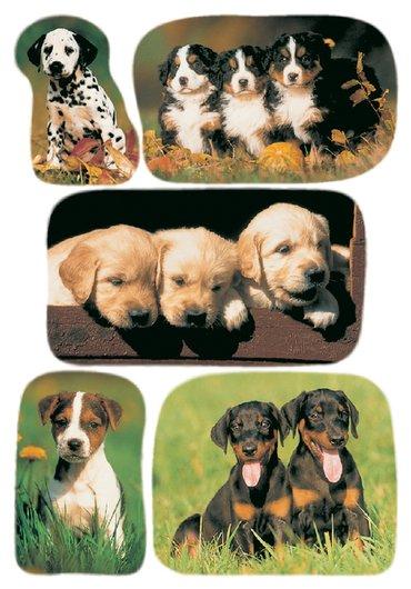 Etiket Herma honden