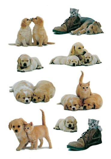 Etiket Herma puppy's