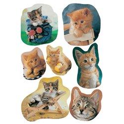 Etiket Herma katten