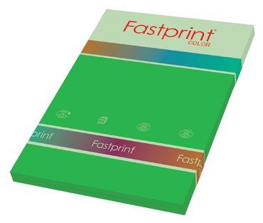 Kopieerpapier Fastprint A4 160gr grasgroen 50vel