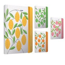 Notitieboek Gipta Prima Notes A5 lijn 4 assorti designs
