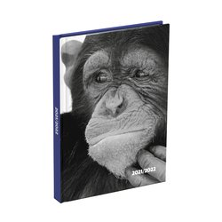 Schoolagenda 2021-2022 Monkey 125x175mm
